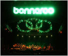 the bonnaroo festival